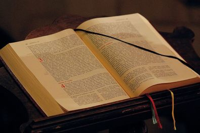 Vicenza presentazione del tema del festival biblico - Libero clipart storie della bibbia ...